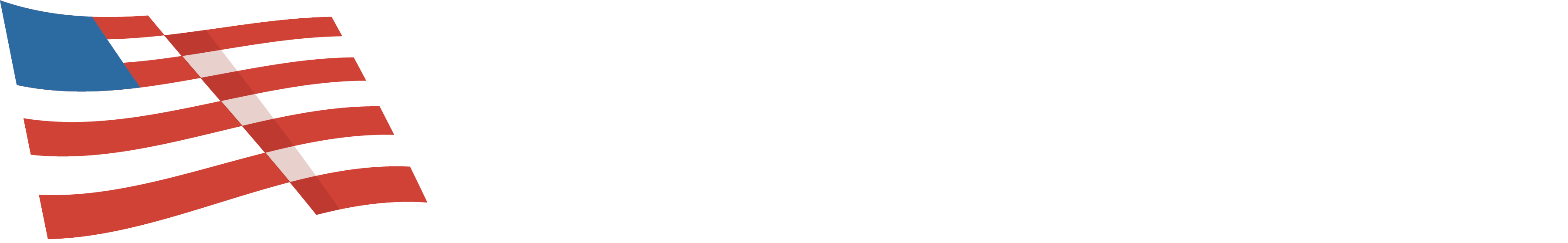Advancing American Freedom